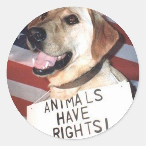 Animals Have Rights Classic Round Sticker