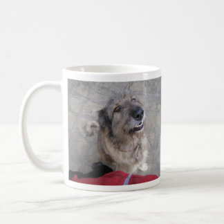 Animals Have Rights! Coffee Mug