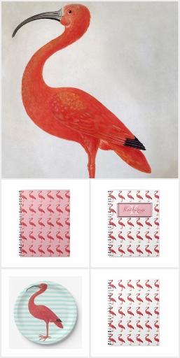 Animals in Art: Flamingo