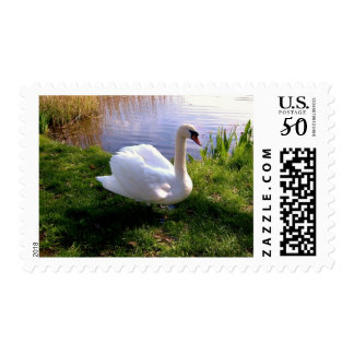 Animals,Landscape, Floral Stamps
