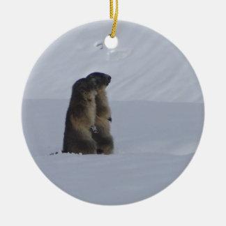 animals marmots savage ceramic ornament