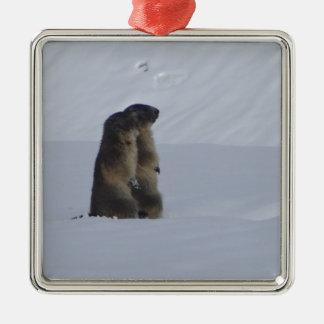 animals marmots savage metal ornament