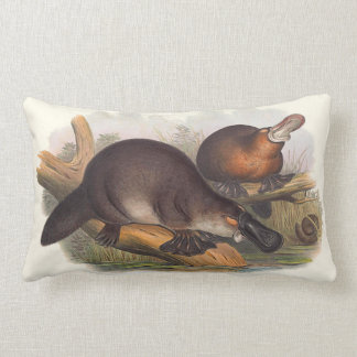 Animals Of Australia Cushions