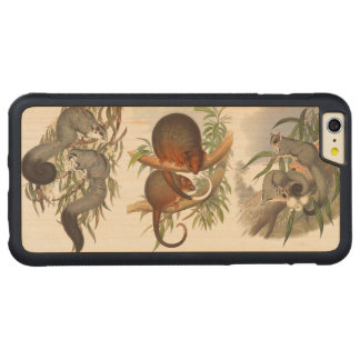 Animals Of Australia The Three Possums On Wood Carved Maple iPhone 6 Plus Bumper Case