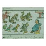 Animals of the Aztec Emperor Postcard