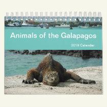 Animals of the Galapagos 2019 Calendar