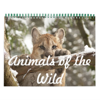 Animals of the Wild Calendar