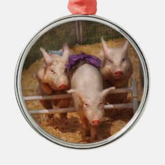 Animals - Pig - Getting past hurdles Metal Ornament