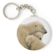 animals-polar-bear keychain