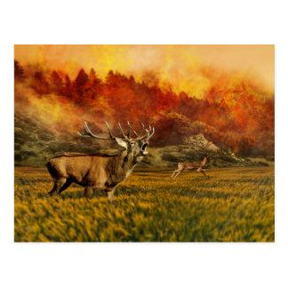Animals Running away from Fire Illustration Postcard