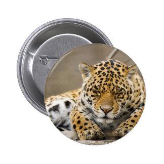 Animals Safari Jungle Office Party Shower Birthday Pins