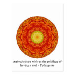 Animals share with us the privilege of having..... post card