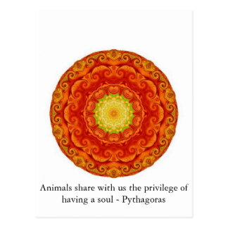 Animals share with us the privilege of having..... postcard