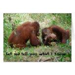 Animals Telling Secrets birthday #2 Cards