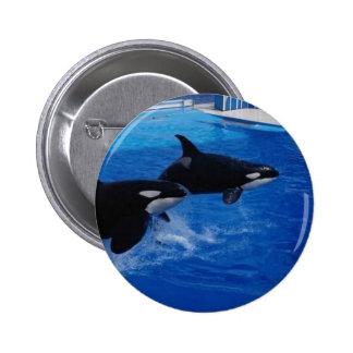 Animals Wild Dolphins Button