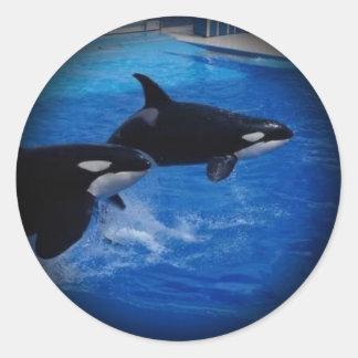 Animals Wild Dolphins Classic Round Sticker