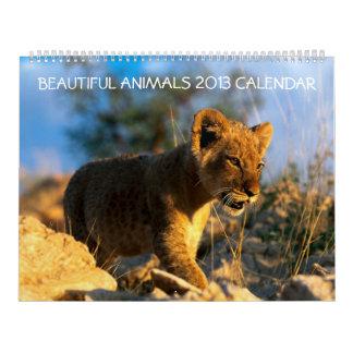 Animals, Wildlife 2013 beautiful wall calendar
