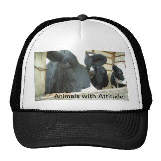 Animals with Attitude! Trucker Hats