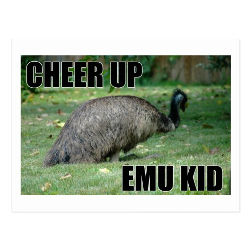 Anime para arriba la postal del niño del Emu
