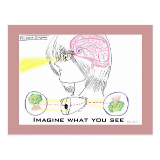 Anime Style Basic Eye-Sight Diagram Postcard