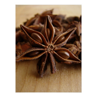 Anise Star Poster