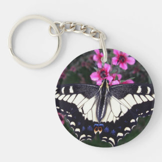 Anise Swallowtail Butterfly Keychain