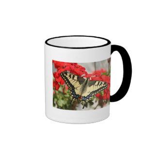 Anise Swallowtail Coffee Muf Ringer Coffee Mug