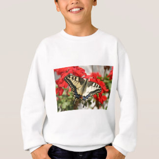 Anise Swallowtail Sweater