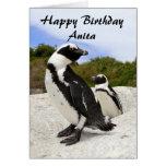 Anita Happy Birthday African Penguins Humor Card