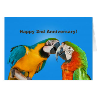 Aniversario, 2do, loros cariñosos tarjeta de felicitación