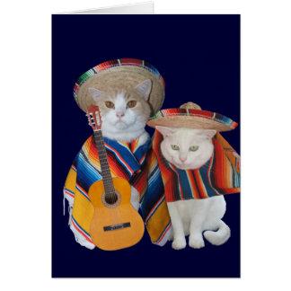 Aniversario divertido del gato para el marido en tarjeta de felicitación