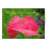 ¡Aniversario feliz! Amapola rosada de las tarjetas
