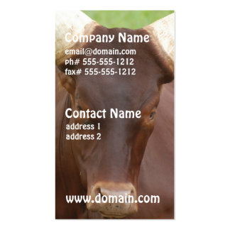 Ankhole Cattle  Business Cards