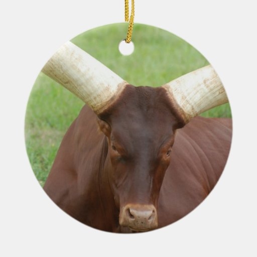 Ankhole Cattle Ornament