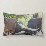 Ankole Cattle Fighting Throw Pillow