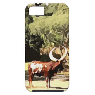 Ankole-Watusi from Safari iPhone SE/5/5s Case