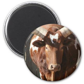 Ankole-Watusi Steer With Huge Horns Refrigerator Magnet