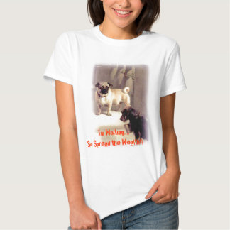 ANMPT286, I'm Waiting....So Spread... - Customized Tee Shirt