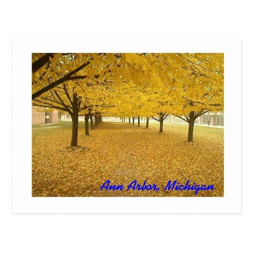 Ann Arbor en caída Tarjetas Postales