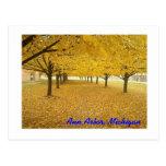 Ann Arbor in Fall Postcard