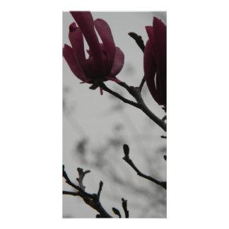 Ann Magnolia Photo Card