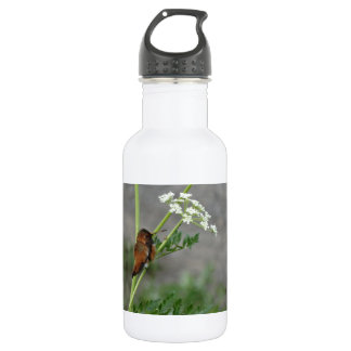 """Ann""""s Lace and bird 18oz Water Bottle"""