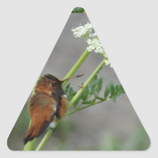 "Ann""s Lace and bird Triangle Sticker"