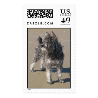 Anna in Maine Postage Stamp