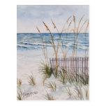 Anna Maria Island Beach Postcard