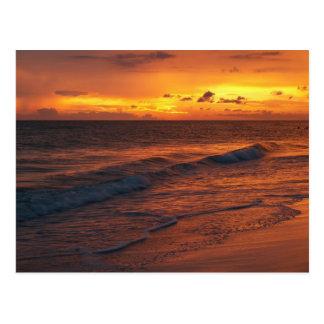 Anna Maria Island FL Postcards