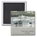 Anna Maria Island, Florida 2 Inch Square Magnet