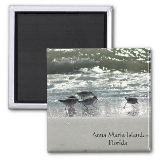 Anna Maria Island, Florida Magnet