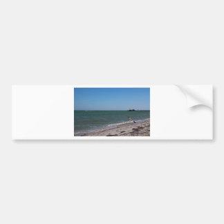 Anna Maria Shoreline Bumper Sticker