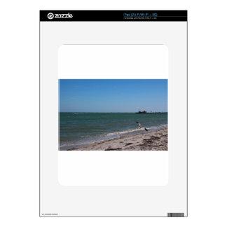 Anna Maria Shoreline Skin For iPad